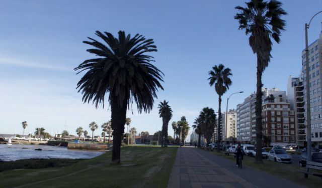 Montevideo City Guide