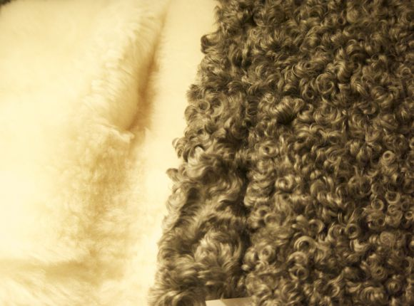 Soft and Curly Lambskins for Fireplace