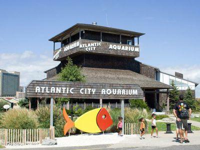 Atlantic City Sightseeing Tour Atlantic City Usa