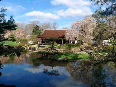Shofuso Japanese House And Garden Pine Breeze Villa Philadelphia
