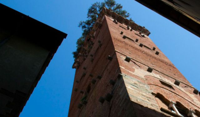 Within the Walls of Lucca