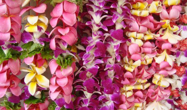 16 Hawaiian Products to Bring Home from Honolulu
