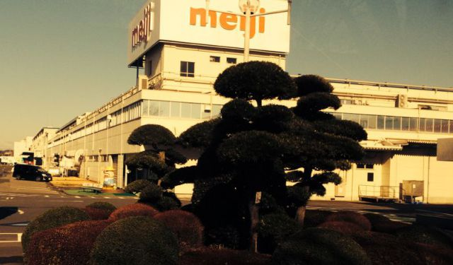 Sweet and Salty: A Visit to the Meiji Chocolate Factory