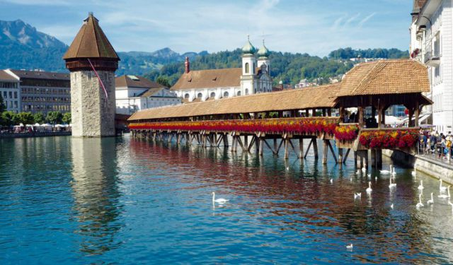 Lucerne: A Quick Guide