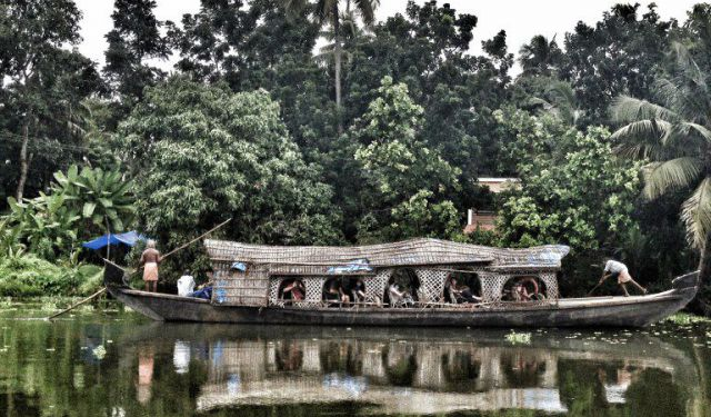 How to Make the Most of Your Travels in Kochi