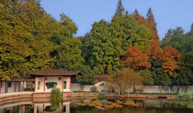 8 Spell-Binding Sights to See in Hangzhou