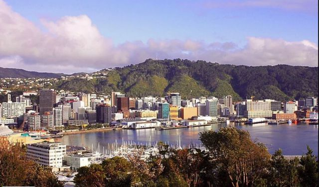 My Comprehensive Guide to Wellington