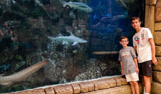 8 Things to Do in Las Vegas… With Kids