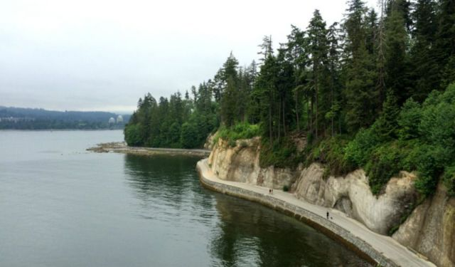 Top 5 Things to See and Do in Stanley Park