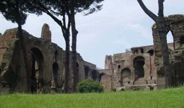 Exploring the Imperial Ruins of Rome's Palatine Hill