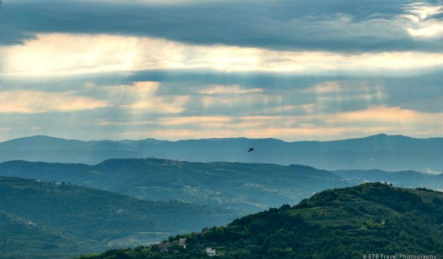 Top Things to Do in Motovun, Croatia