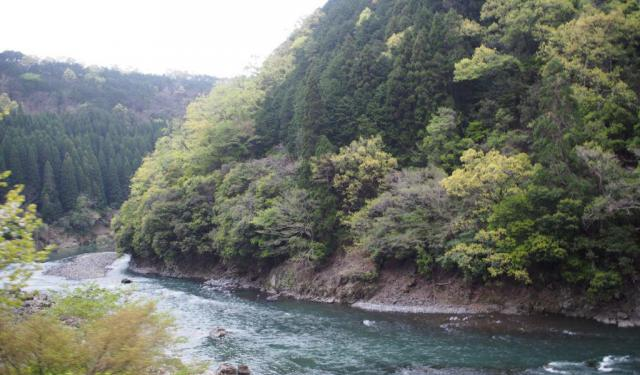A Day in Arashiyama