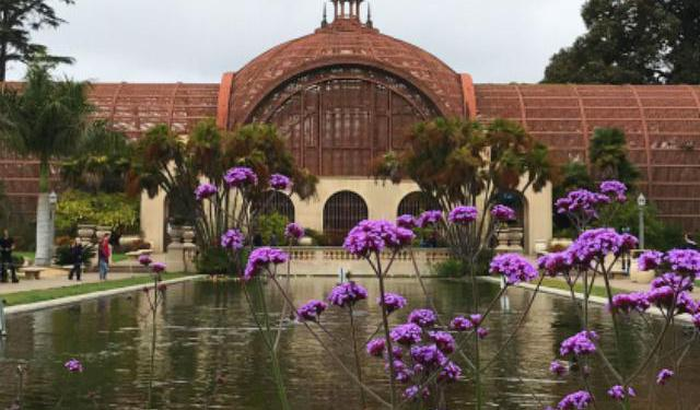 Top 10 Things to See and Do In and Around San Diego