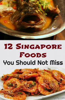 12 Singapore Foods You Should Not Miss