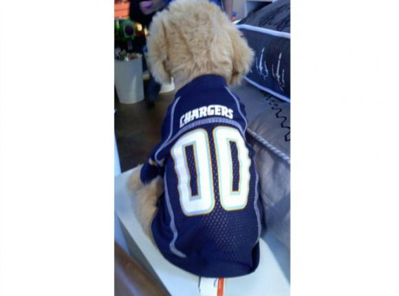Chargers Jersey for Fido