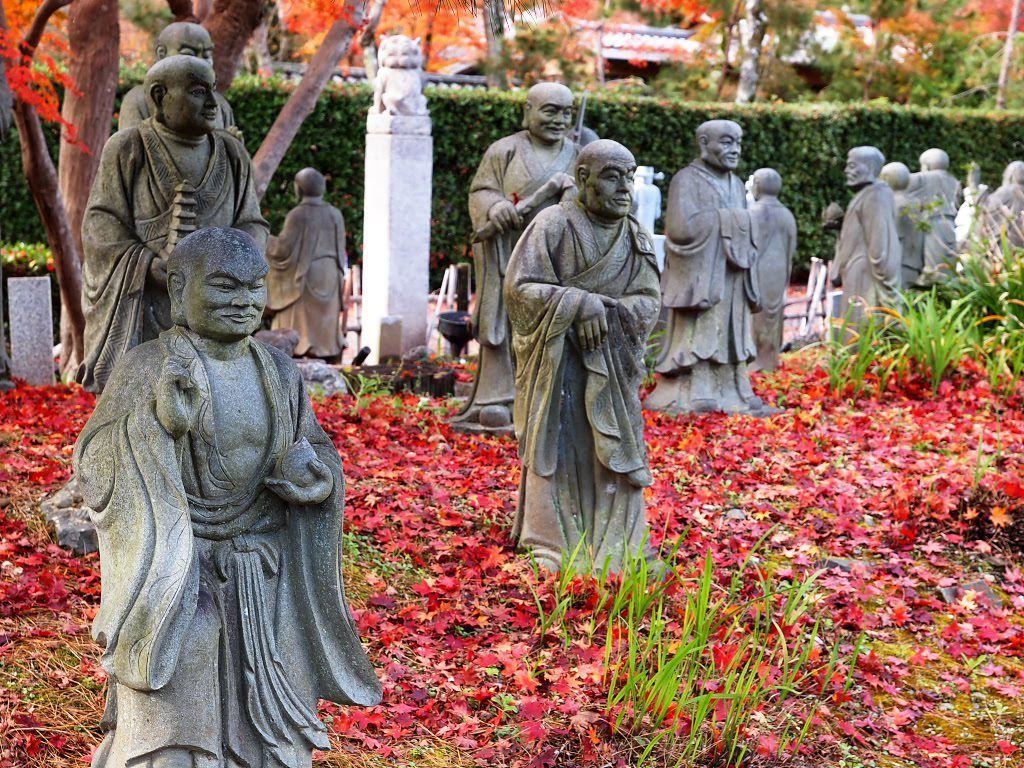 Arashiyama Sightseeing Walking Tour Kyoto Japan