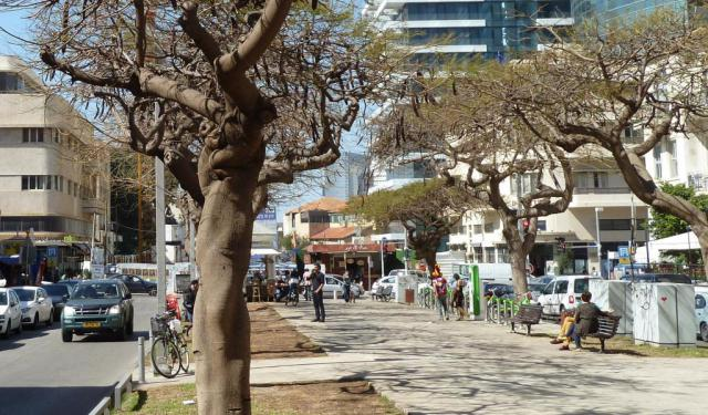top 12 walking tours in tel aviv israel to explore the city
