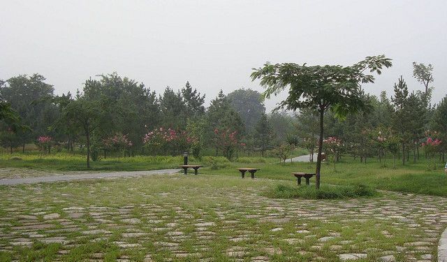 Parks and Squares Walk in Xian, Xian