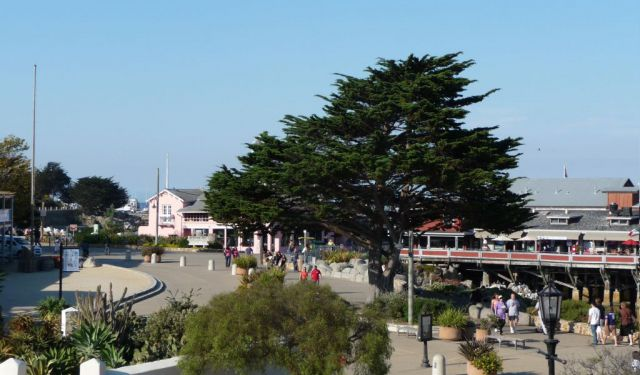 Family Entertainment - Self-Guided Tour in Monterey, Monterey