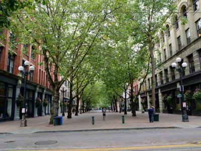 Occidental Park Seattle