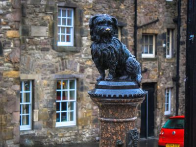 Image result for greyfriars bobby statue