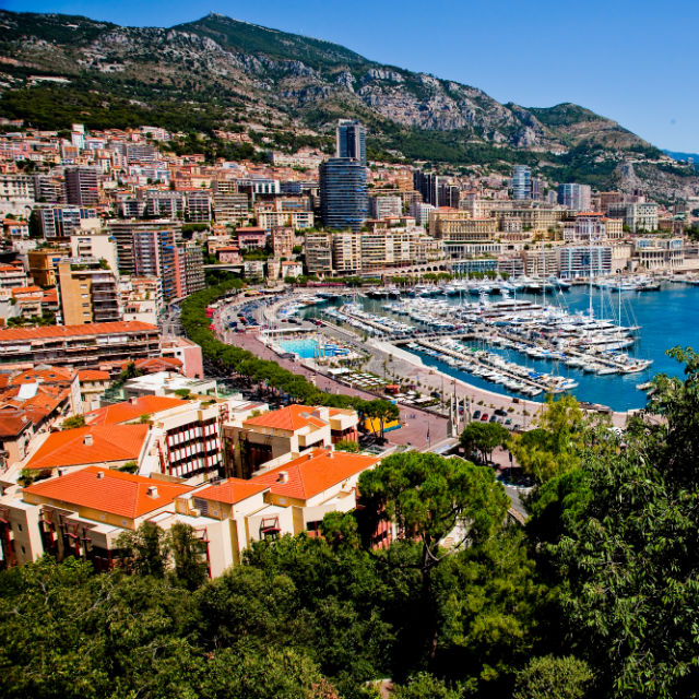 Monte carlo ipo expert view